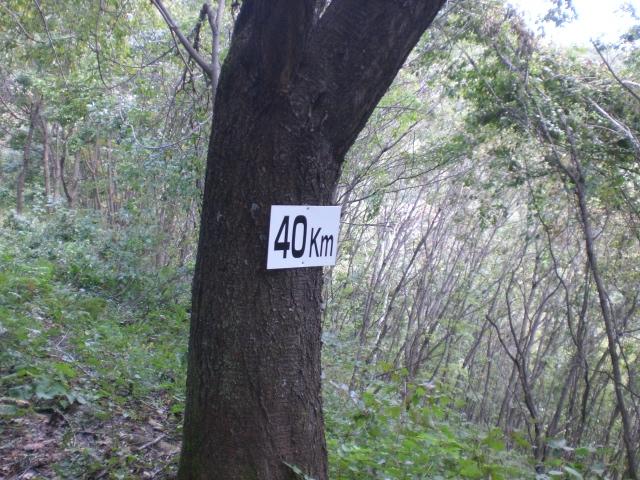 CIMG1371.JPG