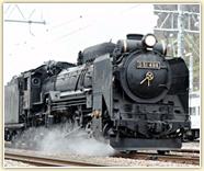 train_img01.jpg
